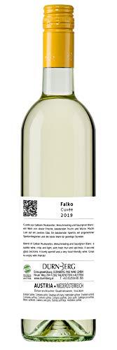 Dürnberg - Falko, Muskatellercuvée 2019 - Qualitäts Weißwein aus Österreich, trocken (6 x 0,75l) - 3