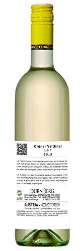 Grüner Veltliner L&T (leicht und trocken) 2019 - Qualitäts Weißwein aus Österreich,trocken (6 x 0,75l) - 3