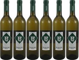 Sauvignon blanc Ried Oberberg 2017 Vulkanland Steiermark 6 Flaschen Weinhof Rauch - 1