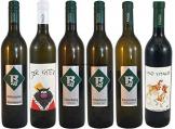 Verkostungspaket kräftig Rieden DAC Vulkanland Steiermark 6 verschiedene Flaschen Weinhof Rauch - 1